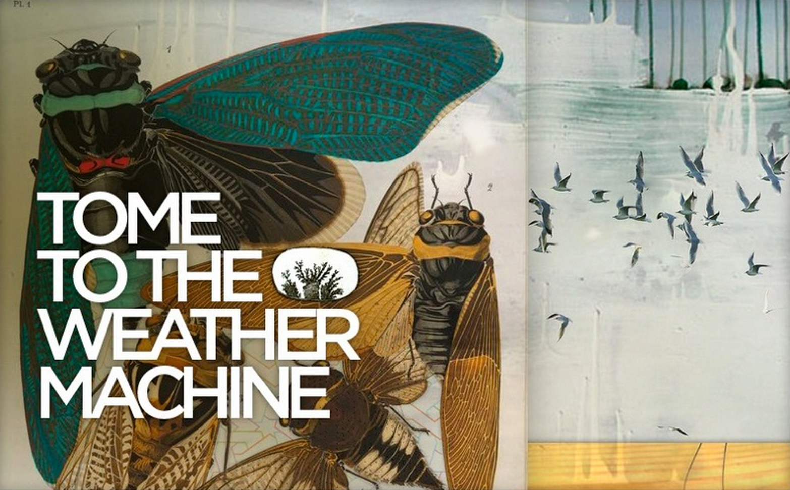 Tome to the Weather Machine review 'Which is Worse'